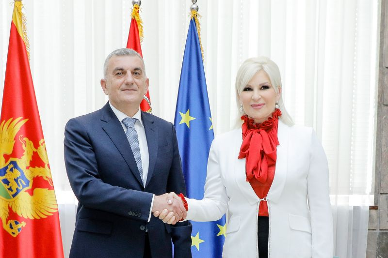 Cooperation with Montenegro in field of mining, energy